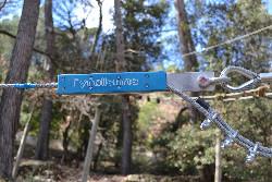 JoncasAventure parcours accrobranche bleu tyrolienne